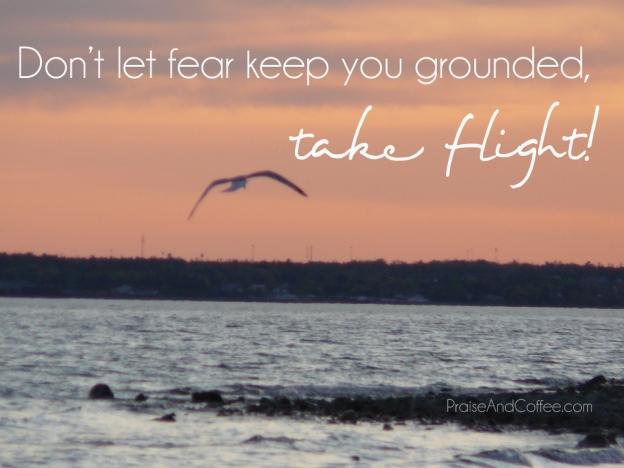 take-flight-2copy